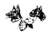 Verein der Hundefreunde Oberboihingen e.V.